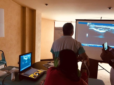 Curso avanzado de ecografia músculo-esquelética