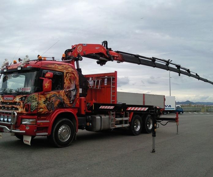 Flota de vehículos: Servicios de Transgodoy
