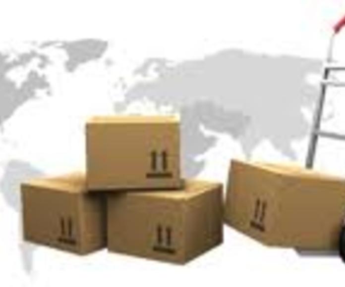 Mudanzas nacionales e internacionales : Servicios de Detectrans Mudanzas y Guardamuebles