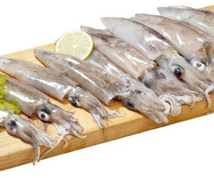 Suministro de pescados para hostelería en Canarias