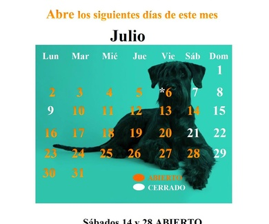 CALENDARIO JULIO 18