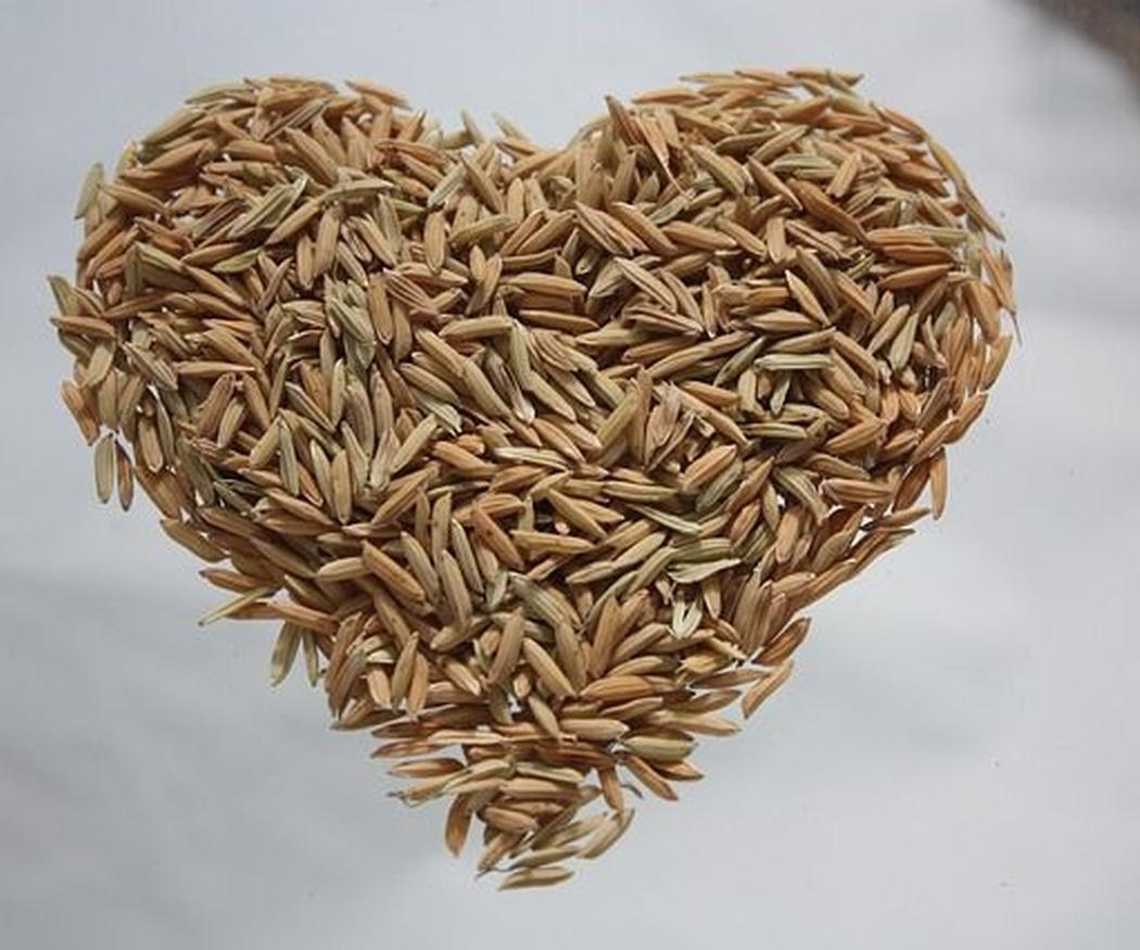 ¡Desmontamos los mitos sobre el arroz!