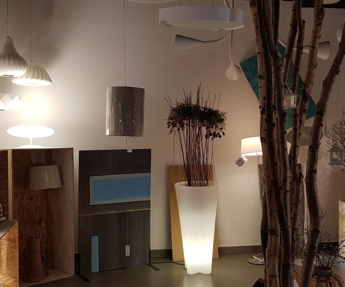 Nueva exposición Decoración de oficinas