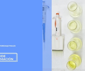 Control de alérgenos alimentarios Sevilla | Laboratorio Aquyma
