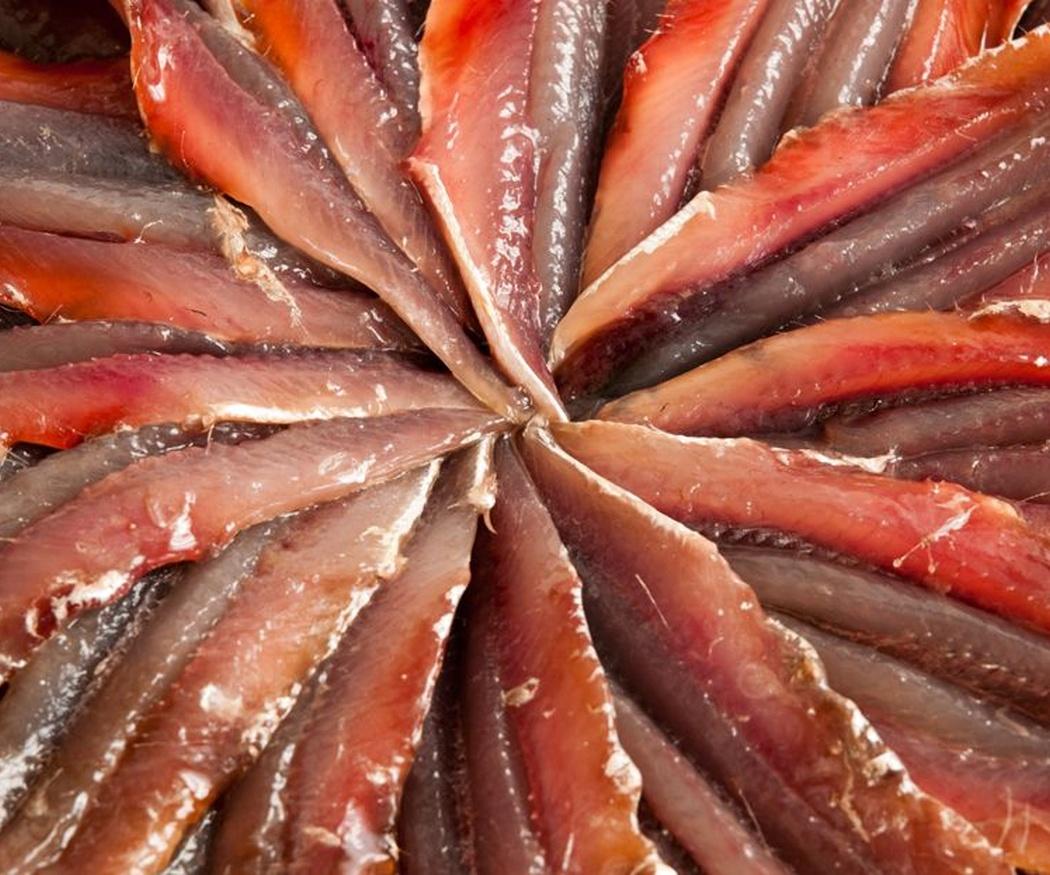 Anchoas, boquerones, bocartes… ¿Sabías que es el mismo pescado?