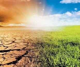 CEOE Aragón analiza la creciente incidencia de los riesgos asociados al cambio climático en las empresas y la salud laboral