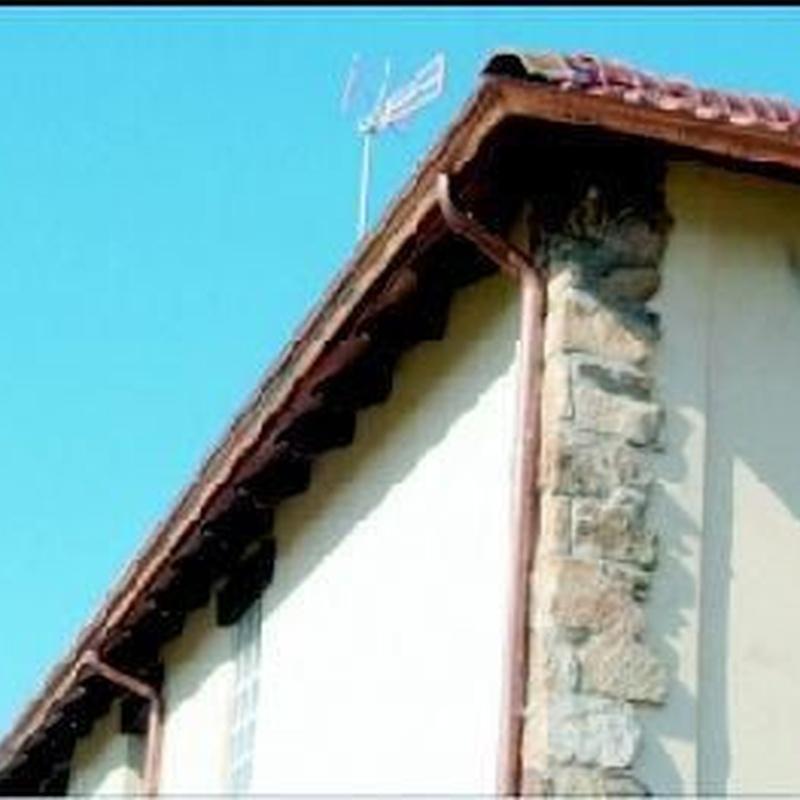 Instalación de pinchos antipalomas: Servicios de Alcarria Pluviales Canalones