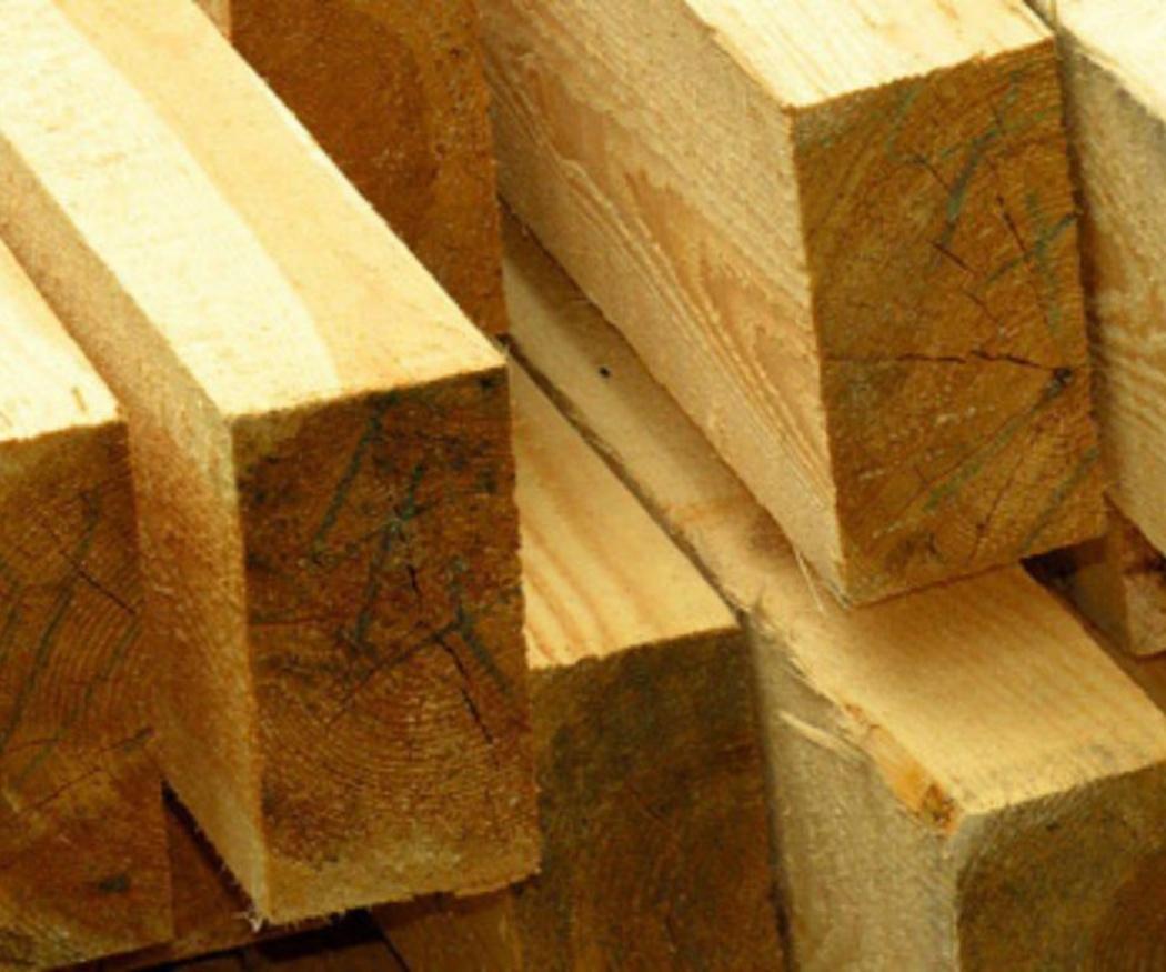 Curiosidades sobre la madera