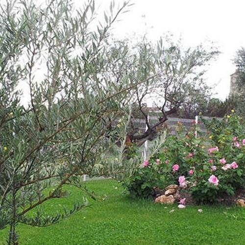 Residencia de ancianos con jardines en Ribatejada (Madrid)