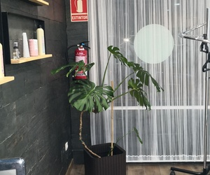 Peluquería y estética en Cabañas