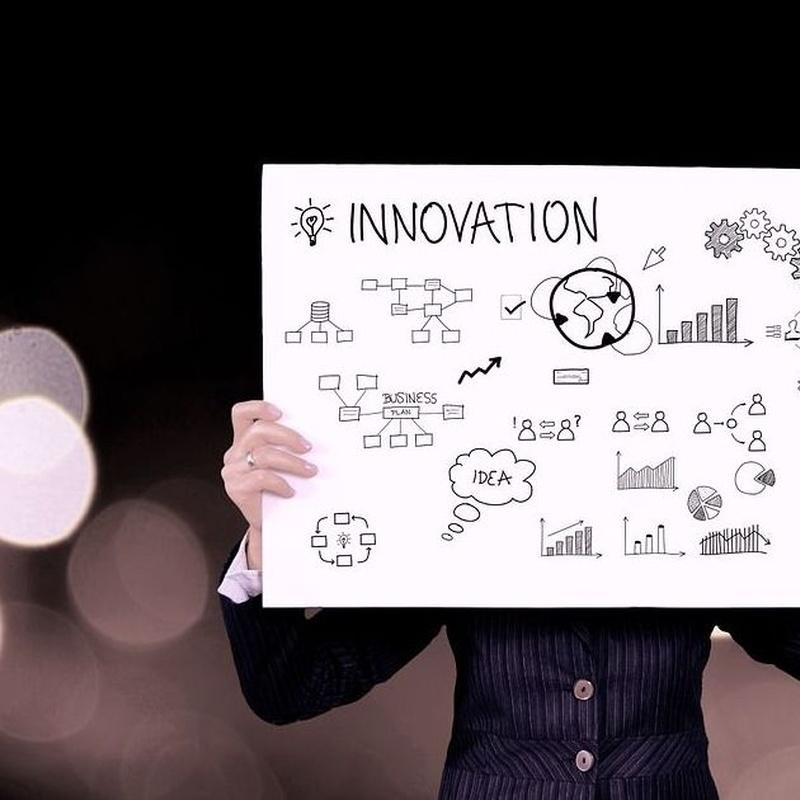 Creación de Empresas: Áreas de Gem Assessors