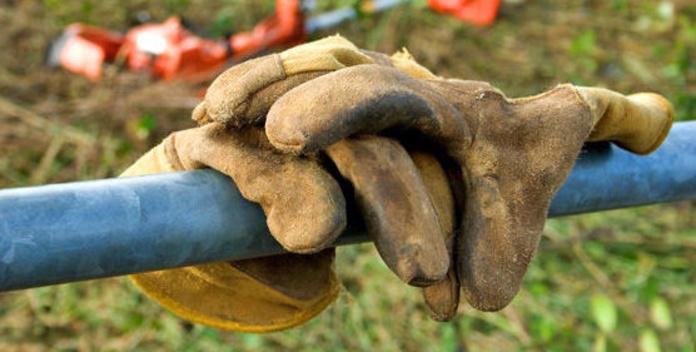Desbroces: Servicios  de Jardinería Algarrada