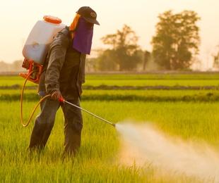 Aplicación de productos fitosanitarios