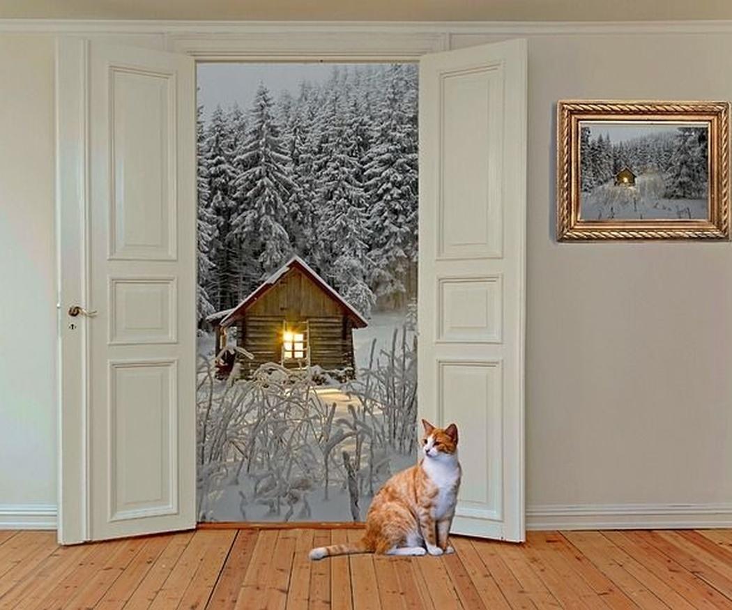 La versatilidad de las puertas de madera