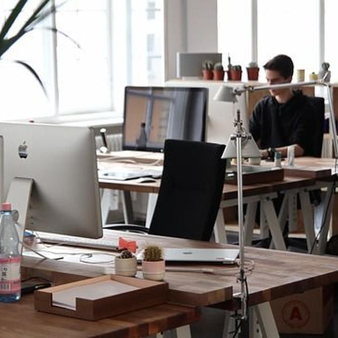 La importancia de tener una buena oficina y saber elegir su composición