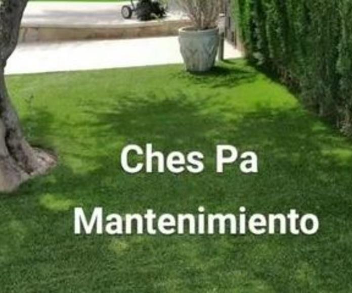 Mantenimiento de césped artificial Valencia