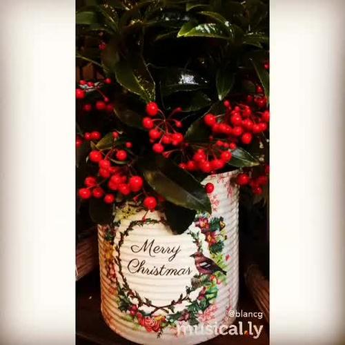 Christmas time. Arreglos florales para Navidad.