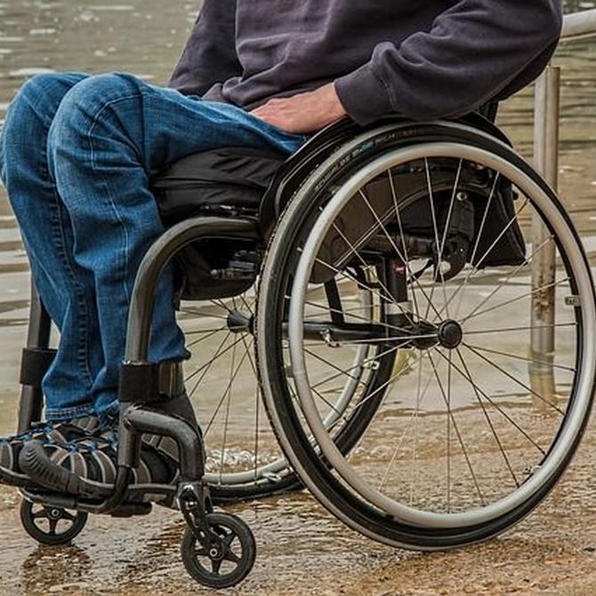 Principales tipos de sillas de ruedas