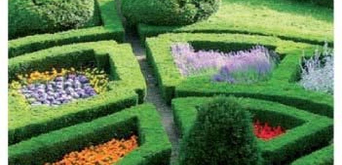 Endoterapia vegetal en Hortaleza (Madrid) con los diseños más originales para tus jardines