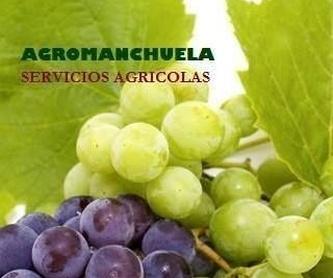 Montaje de riegos: Servicios de AGROManchuela