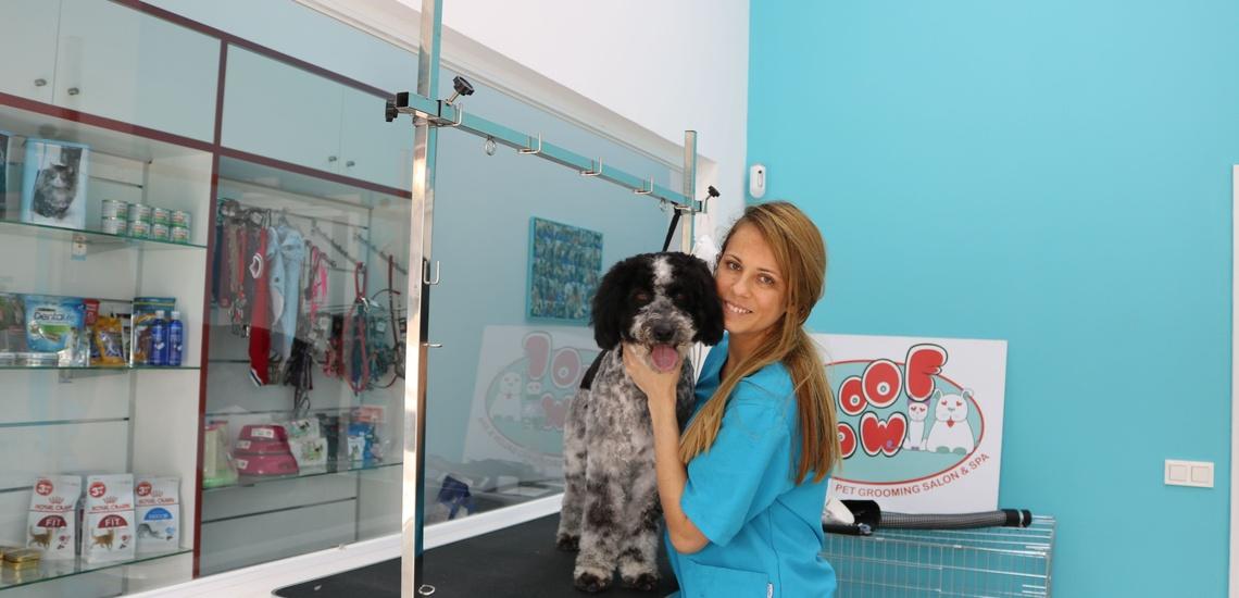 Peluquería y estética canina en Marbella