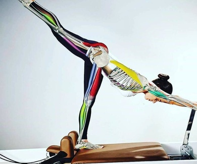 Joseph H. Pilates Dice:
