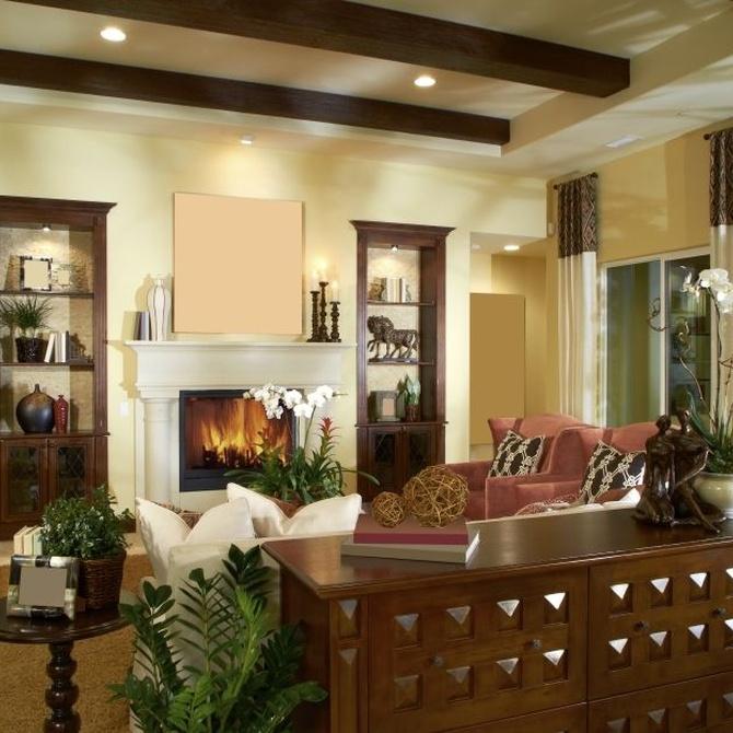 Ideas para los muebles del salón