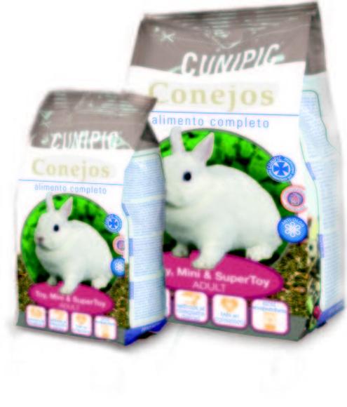 Premium conejos toy,mini y super toy adult.: Productos y servicios de Més Que Gossos