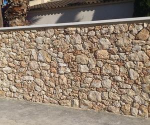 Piedra de Campoamor: La Almaina