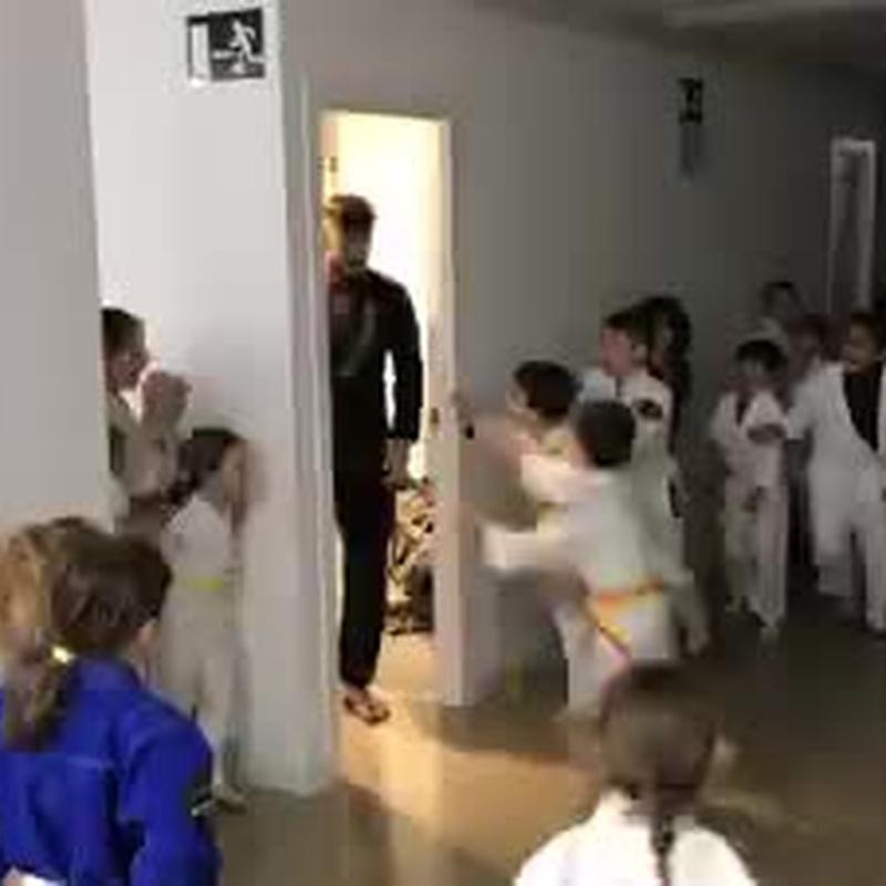 Jiu jitsu infantil.  BJJ KIDS: Actividades de Mushin Espai