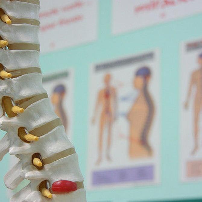 Fracturas de columna vertebral por osteoporosis