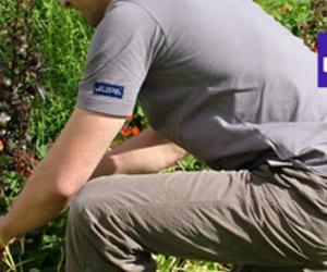 Servicio de mantenimiento y jardinería en Madrid
