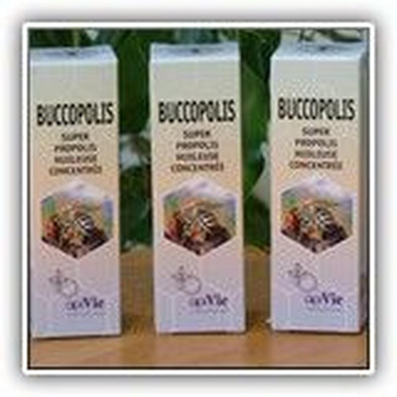 Buccopolis: Catálogo de Natur - Graes, S.L.