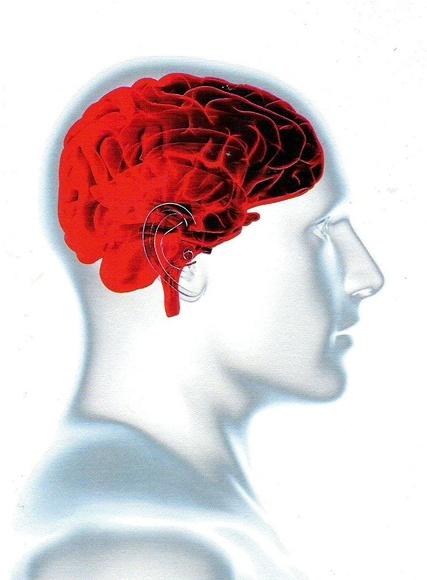 Herramientas complementarias a la Psicoterapia para combatir el estrés.