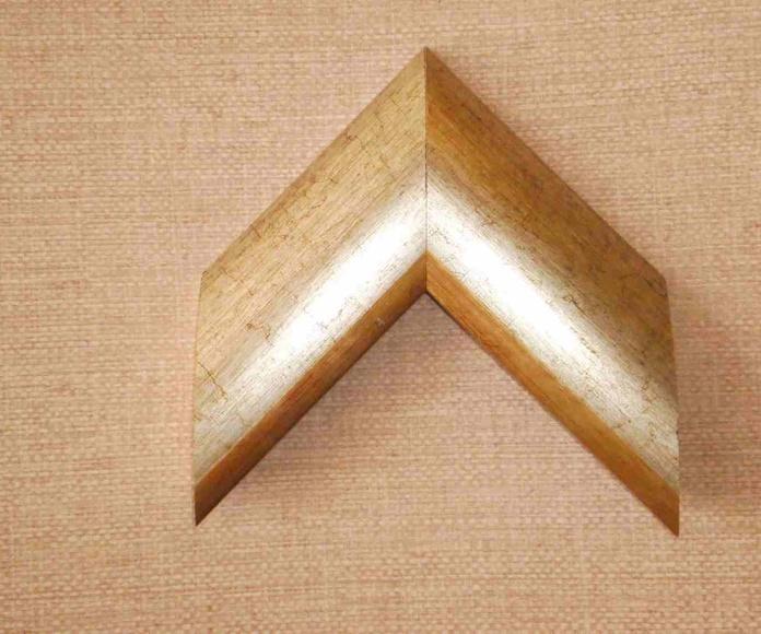 REF 300-006: Muestrario de Moldusevilla