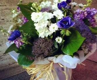 Cestones con hortensia: Nuestros trabajos de Moonflower