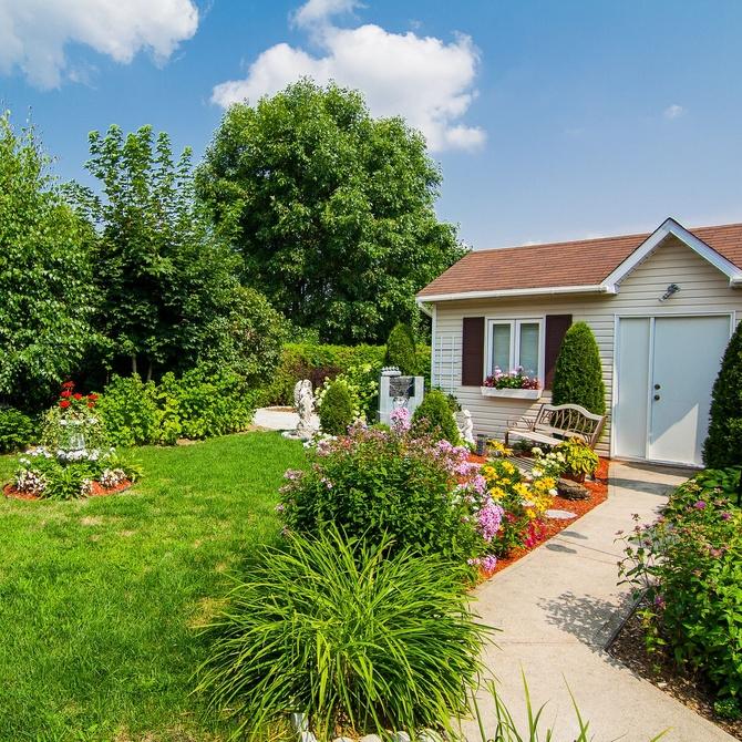 Trucos para mantener tu jardín con vistas a la primavera