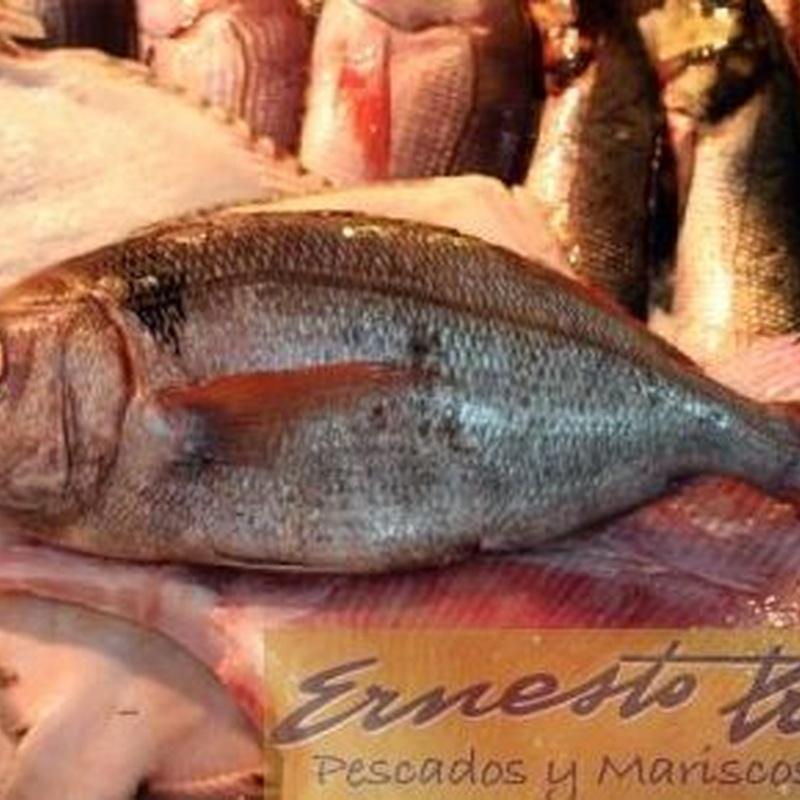 Besugo gordo: Productos de Ernesto Prieto
