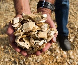 Venta y transporte de biomasa