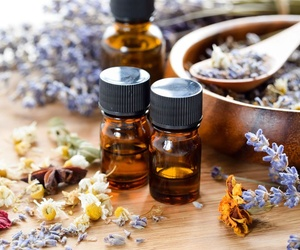 Productos homeopáticos en Borriol