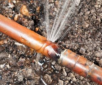Detección de fugas de agua Alicante