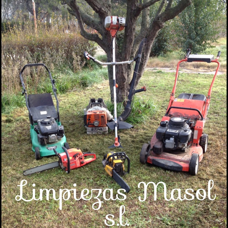 3.  Mantenimiento de jardines   : Servicios  de Limpiezas Masol, S.L.