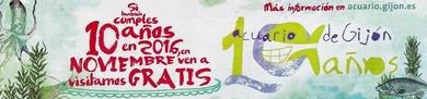 Consigue tu entrada para el Acuario de Gijón ( Asturias ) a tan solo un click