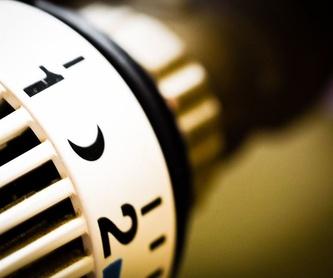 Energías renovables : Servicios de Pereiro Casal