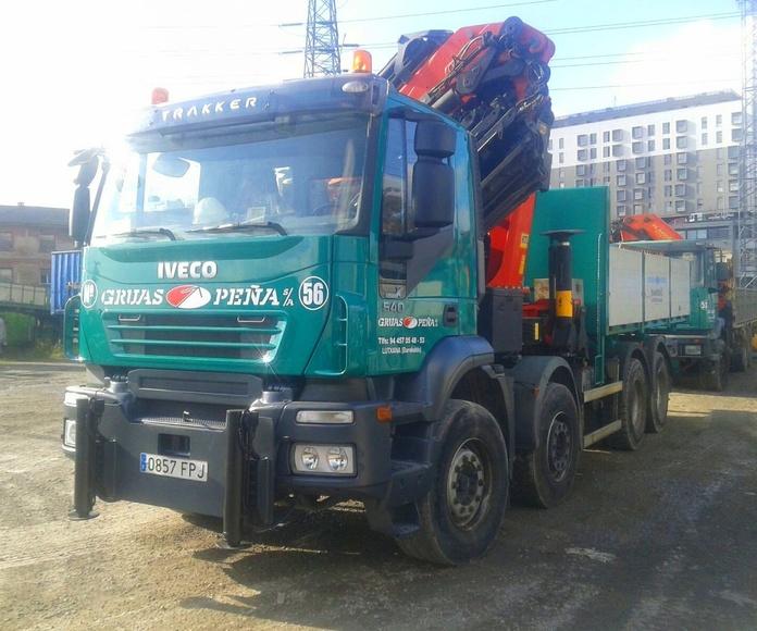 Camiones: Servicios de Camiones con Grúas Peña