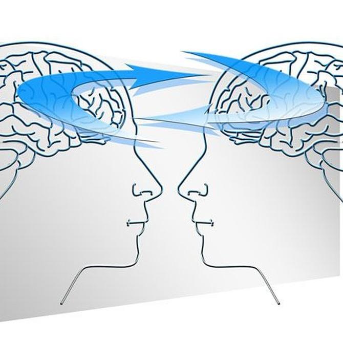 ¿Qué es la Terapia de Interacción Recíproca?
