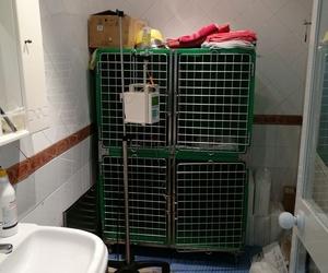 Instalaciones de nuestra clínica veterinaria en Priego de Córdoba