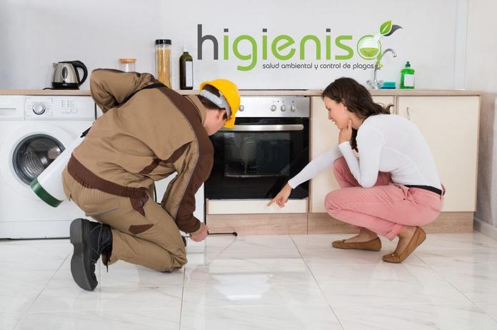 fumigar piso cucarachas