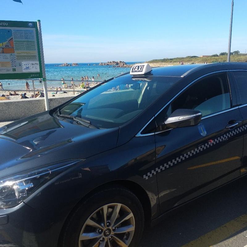 Traslados de corto y largo recorrido: Servicios de Taxi o Minis