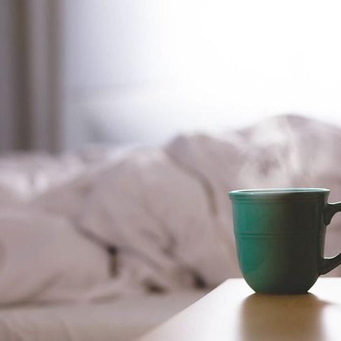Breve historia del colchón